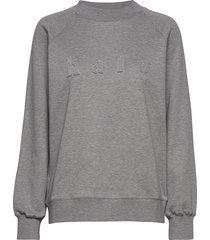 kajo college sweat-shirt trui grijs hálo
