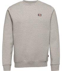 oakport sweatshirt sweat-shirt tröja grå dickies