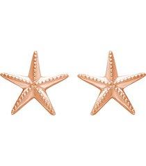 orecchini a lobo silver collection rosa stella marina per donna