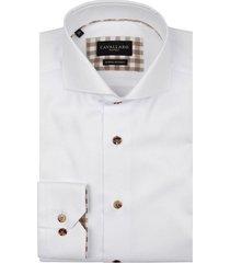 spina shirt