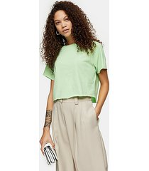 petite light green raglan crop t-shirt - light green