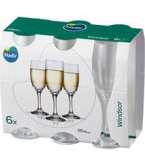 jogo de taças nadir windsor champanhe com 6 peças 210ml