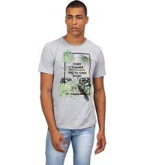 camiseta masculina every summer cinza - cinza - masculino - dafiti