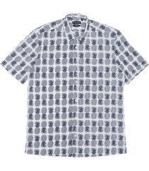 antony morato shirt regular fit white & blue ananas print