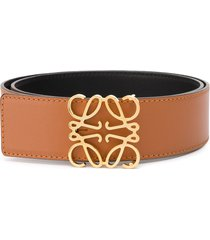 loewe wide logo belt - brown