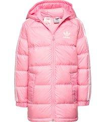 down jacket gevoerd jack roze adidas originals