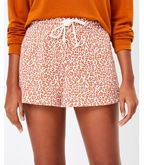 loft petite lou & grey leopard print terry shorts