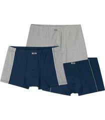 boxershort, pak van 3, blauw/grij 5