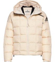 w zne dwn jkt outerwear sport jackets crème adidas performance