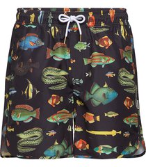 swim shorts sandhamn fish badshorts svart dedicated