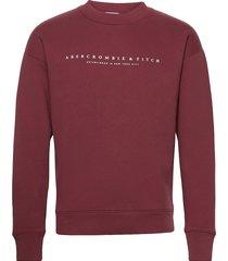 anf mens sweatshirts sweat-shirt tröja röd abercrombie & fitch