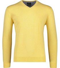 baileys pullover geel v-hals