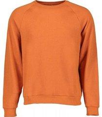 sweater scout sweatshirt crew neck gauzed (flp10051-orange)