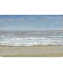 "tim otoole beach walking day i canvas art - 37"" x 49"""