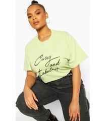 plus curvy and fabulous slogan t-shirt, sage