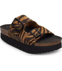 stb-cara platform print shoes summer shoes flat sandals brun shoe the bear