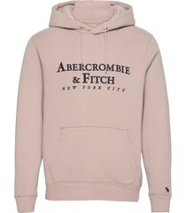 anf mens sweatshirts hoodie rosa abercrombie & fitch