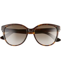 women's gucci 55mm gradient cat eye sunglasses - dark havana/ brown