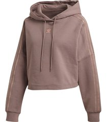 sweatshirt cropped hood