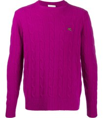 etro cable-knit logo pullover - pink