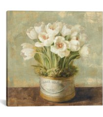 "icanvas hatbox tulips by danhui nai gallery-wrapped canvas print - 18"" x 18"" x 0.75"""