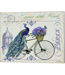 peacock on bicylce i by jean plout canvas art